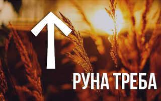 Значение славянской руны Треба