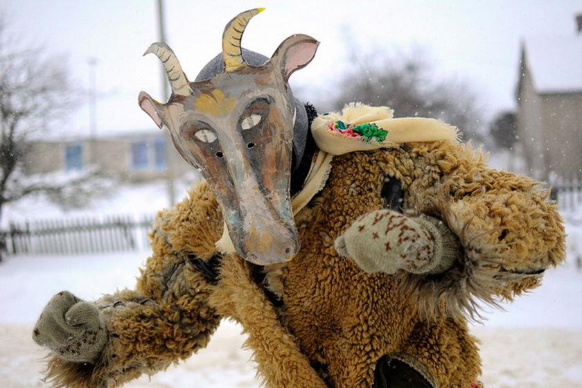 Уличный костюм козы