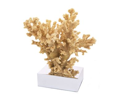 Коралл декоративный